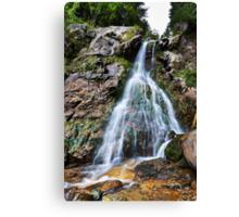 Varciorogului waterfall in Romania Canvas Print