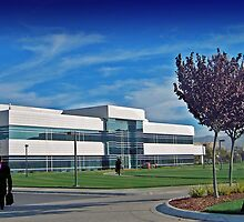 business world in Silicon Valley by happyphotos