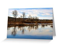 Trees on Tranquil Lake Greeting Card