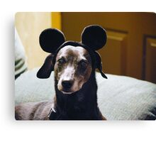 Scooby Mouse.... Canvas Print