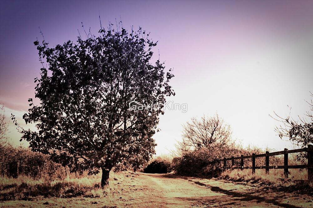 Tree Speaking by Gavin King