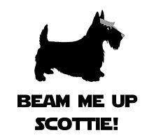 Beam Me Up Scottie by TheBestStore