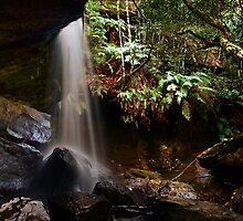 Nature's Shower - The Grotto, Fitzriy Falls, NSW by Malcolm Katon