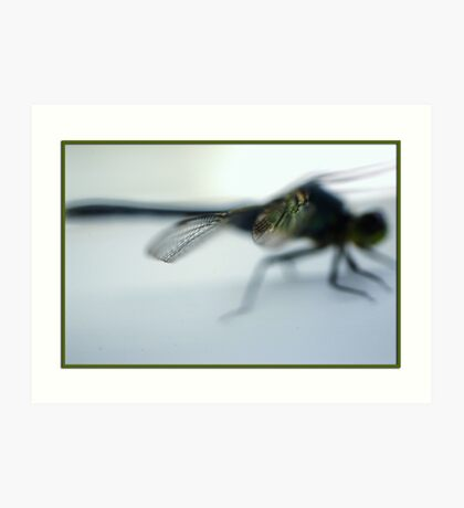 Macro shot of a portion of a dragon fly wing Art Print