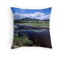 Manning River #2 Throw Pillow