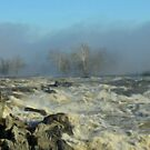 Morning Fog at the River by Bine