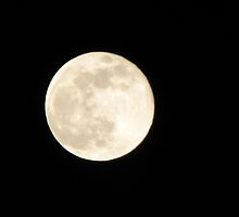 Making History....2008's Biggest Full Moon of the Year! by Sheila  Pasket
