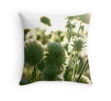 wild desert flowers Throw Pillow