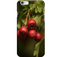 Beauty Is Everywhere!  iPhone Case/Skin