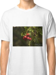 Beauty Is Everywhere!  Classic T-Shirt