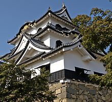 Hikone Castle, Japan. by johnrf