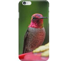 RAINBOW COLORED ANNA'S ON PERCH iPhone Case/Skin