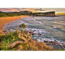 Solitary - Avalon Beach - The HDR Experience Photographic Print