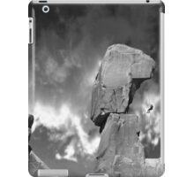 3800 iPad Case/Skin