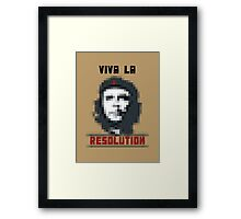 VIVA LA RESOLUTION Framed Print
