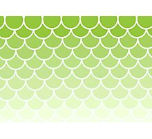 Ombre Fish Scale In Lime Photographic Print