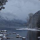 lake scene by tayja