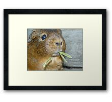 Fudge Framed Print