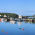 Port Magee Panorama by Callanan