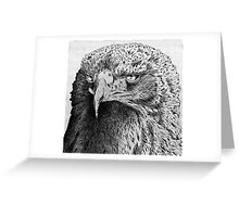 Golden Eagle Etching Greeting Card