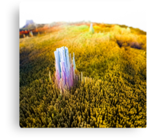 Monolith in green field Canvas Print