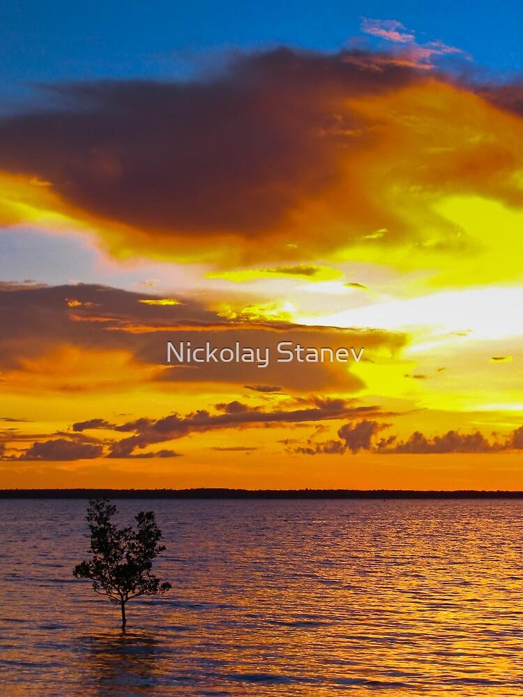 Darwin Sunset by Nickolay Stanev