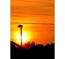 sunlit lamp Photographic Print