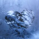 Love cuts through the cold... by Tracy Wazny
