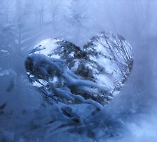 Love cuts through the cold... by Tracy Faught