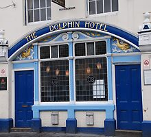 The Dolphin.  by linsads