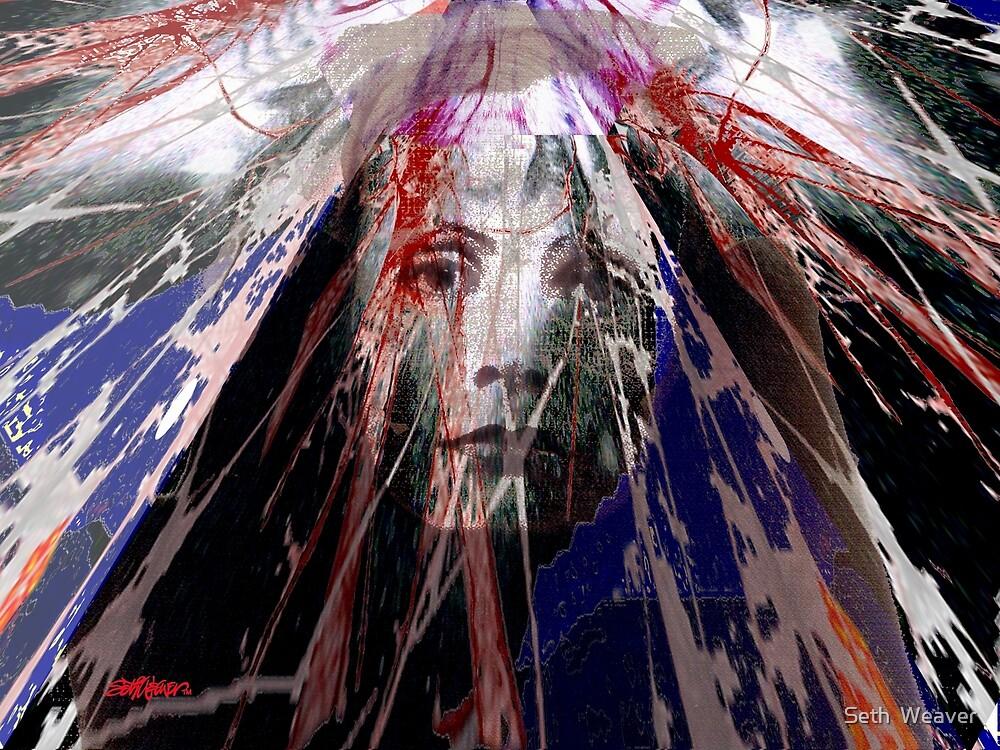 Despair by Seth  Weaver