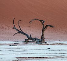 Deadvlei by Marylou Badeaux