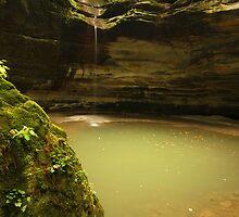 Mossy Rock by Adam Bykowski