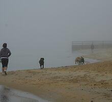 Foggy walks by Maggie Hegarty