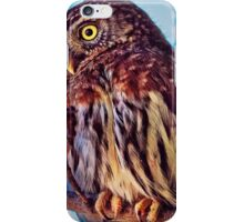 An Owl in Daylight iPhone Case/Skin