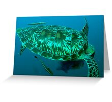 Green turtle shell Greeting Card