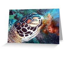 Turtle Jelly Greeting Card