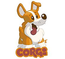 Corgi Love! Photographic Print