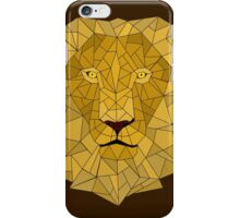 lion and his shattered pride iPhone Case/Skin