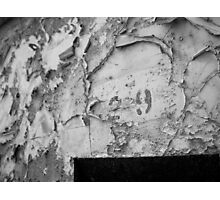 Cell 29 Photographic Print