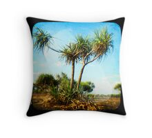 Arnhem 1623 Throw Pillow