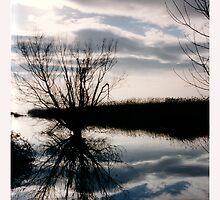 Lake III by Vivi Kalomiri