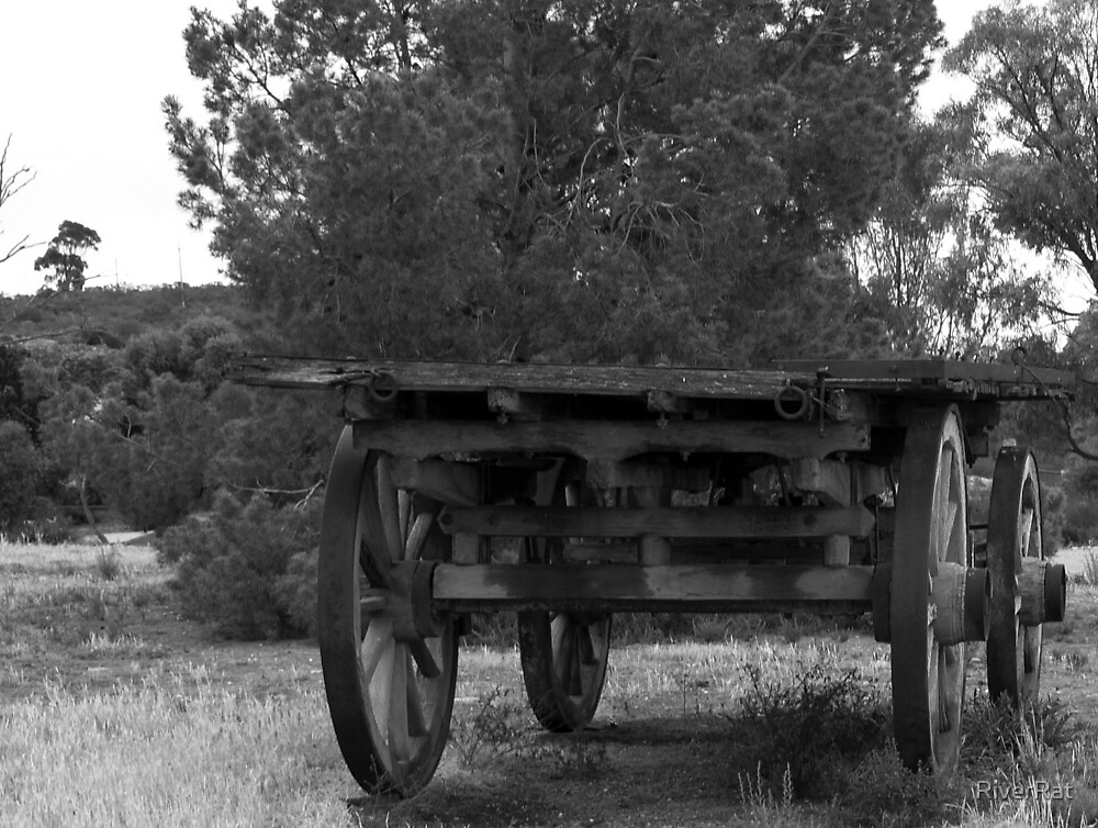 Old Cart by RiverRat