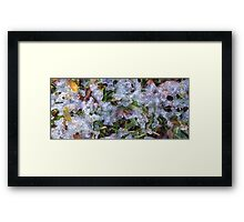 Small World IV Framed Print