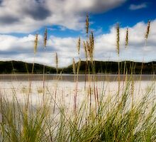 Morar Estuary by JayteaUK