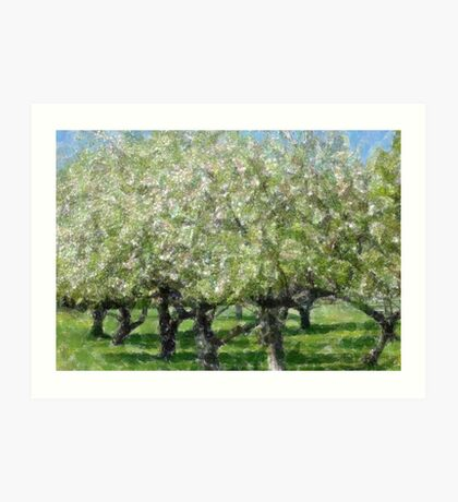 Apple Tree Orchard Art Print