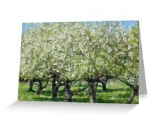 Apple Tree Orchard Greeting Card