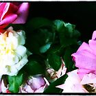 Travelling Roses by Cyn Piromalli