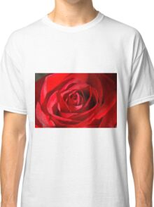 Red Petals Of A Rose Classic T-Shirt