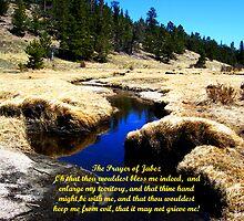 The Prayer of Jabez by Michael Reimann
